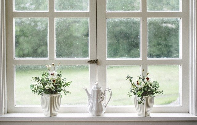 white window with small plants